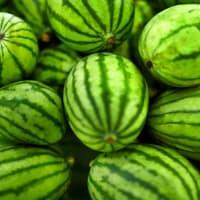watermeloenen (10 stuks)