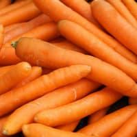 carottes (20 kg)